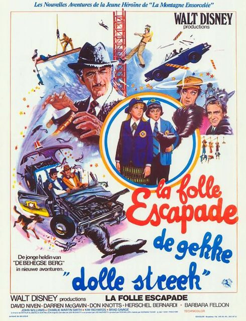 Affiche Poster folle escapade no deposit return disney