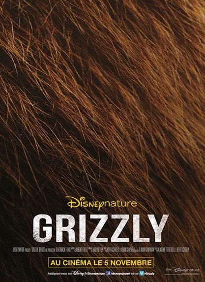 Affiche Poster Grizzly Bears disney disneynature