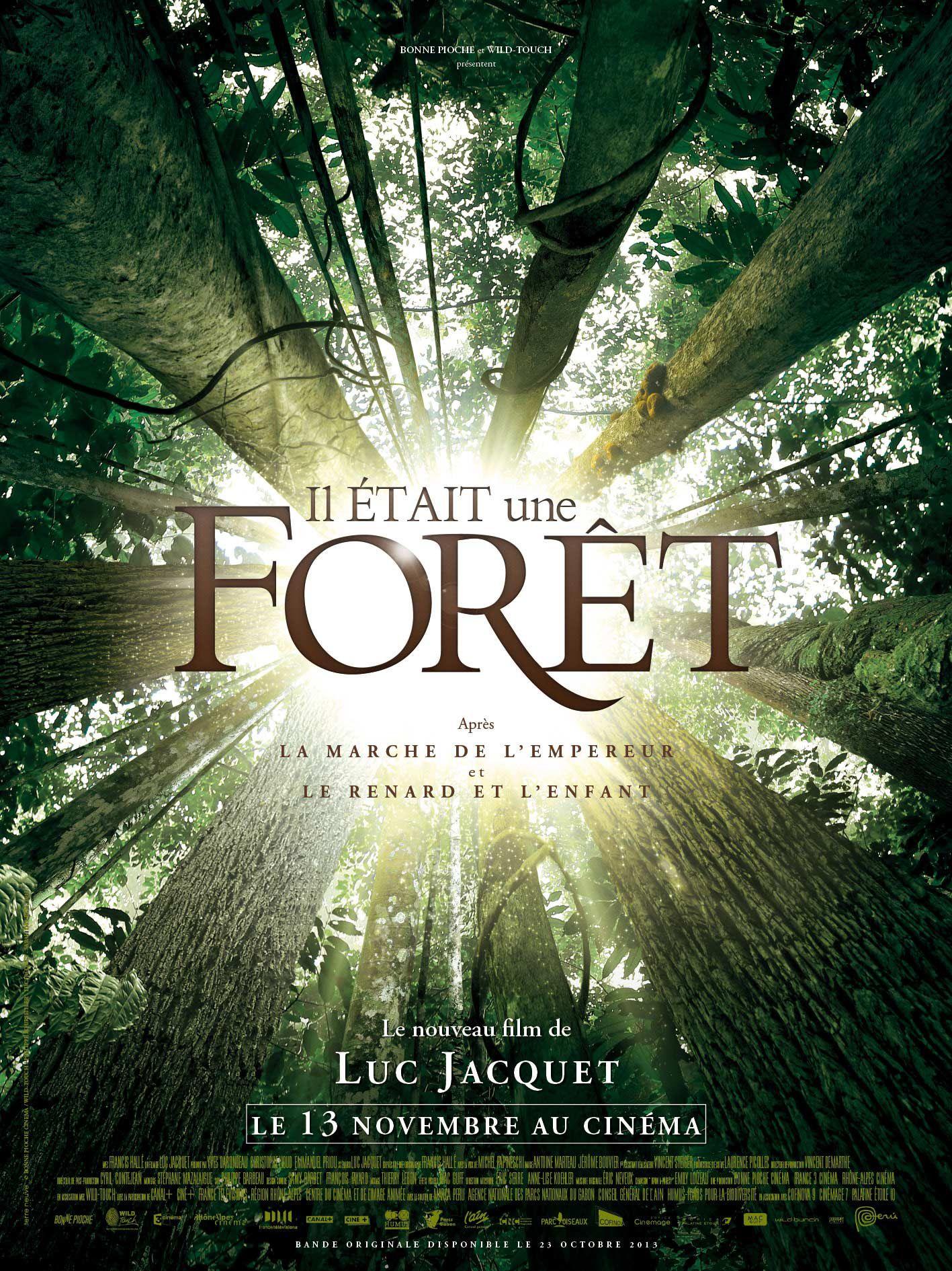 Affiche Poster Il était une forêt once upon a forest disney disneynature