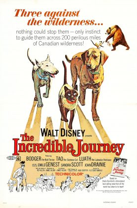 Affiche Poster incroyable randonnee incredible journey disney