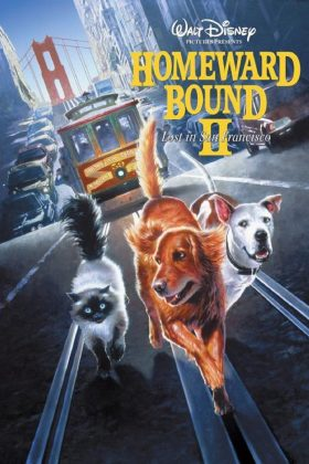 Affiche Poster incroyable voyage san francisco homeward bound incredible journey disney