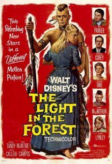 Affiche Poster lueur forêt light forest disney