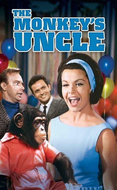 Affiche Poster neveu studieux monkey uncle disney