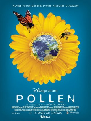 Affiche Poster Pollen Wings of life disney disneynature