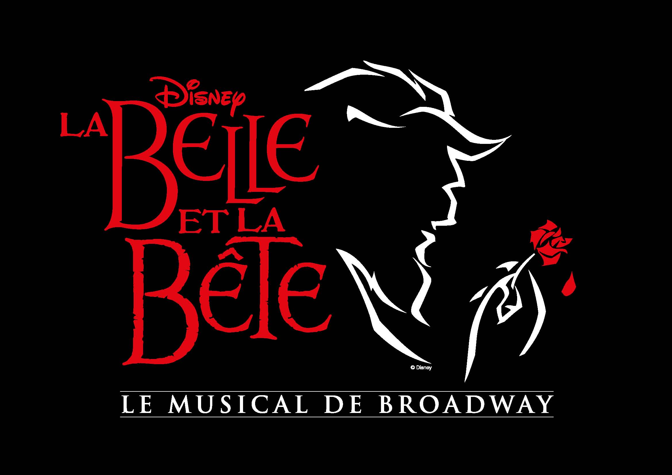 Disney Musical Belle et la Bête Broadway