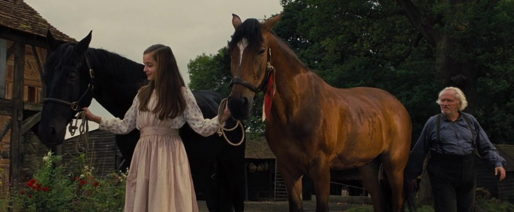 Image cheval guerre war horse disney touchstone