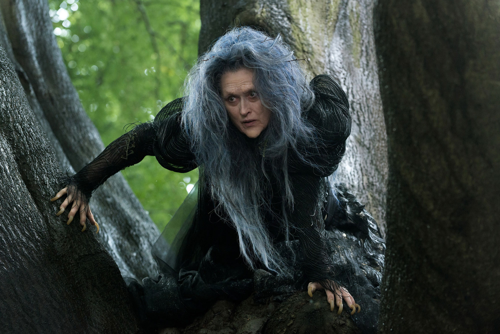 into the woods image Disney sorcière witch character
