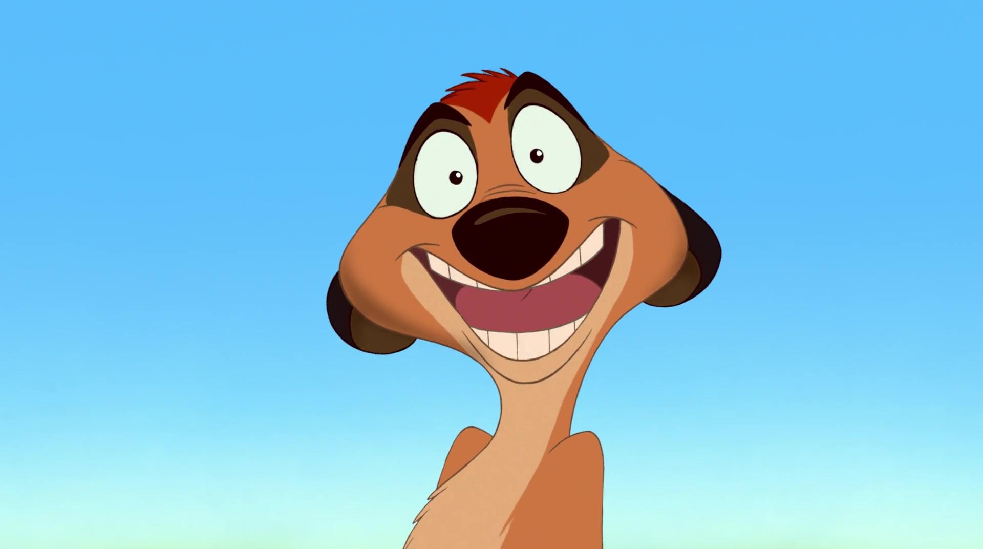Timon personnage dans le roi lion disney planet - Les aventures de timon et pumba ...