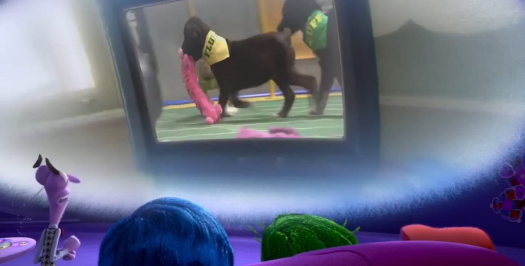 Puppy Bowl Vice-Versa Pixar Disney Inside Out