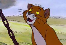 Disney Illustration Faux Raccord Les Aristochats