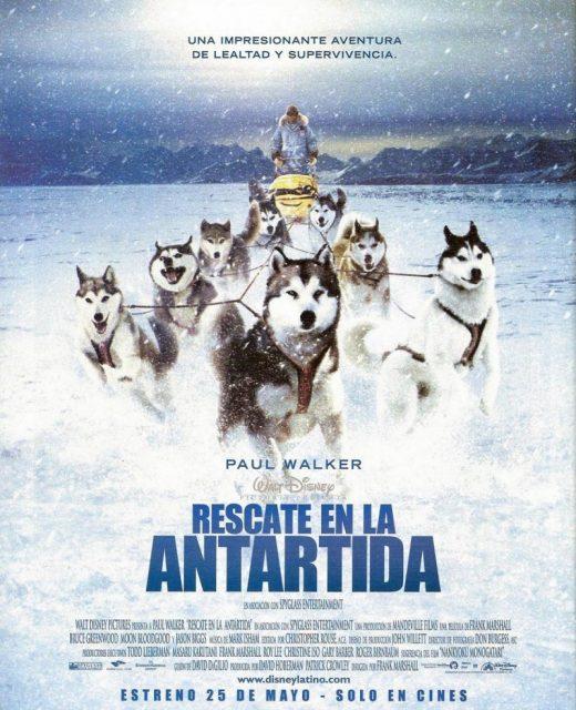 Affiche Poster antartica prisonniers froids eight bellow disney