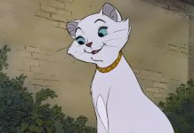 image duchesse personnage aristochats film disney animation