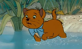 toulouse chat cat personnage character aristochats aristocats disney animation
