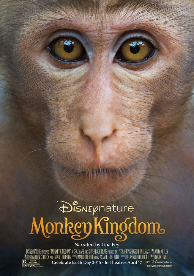 Illustration Actu Monkey Kingdom Disney Nature
