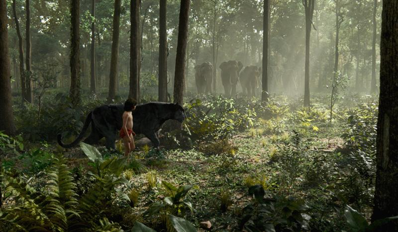 disney le livre de la jungle book