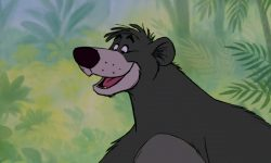 baloo personnage livre jungle book disney character