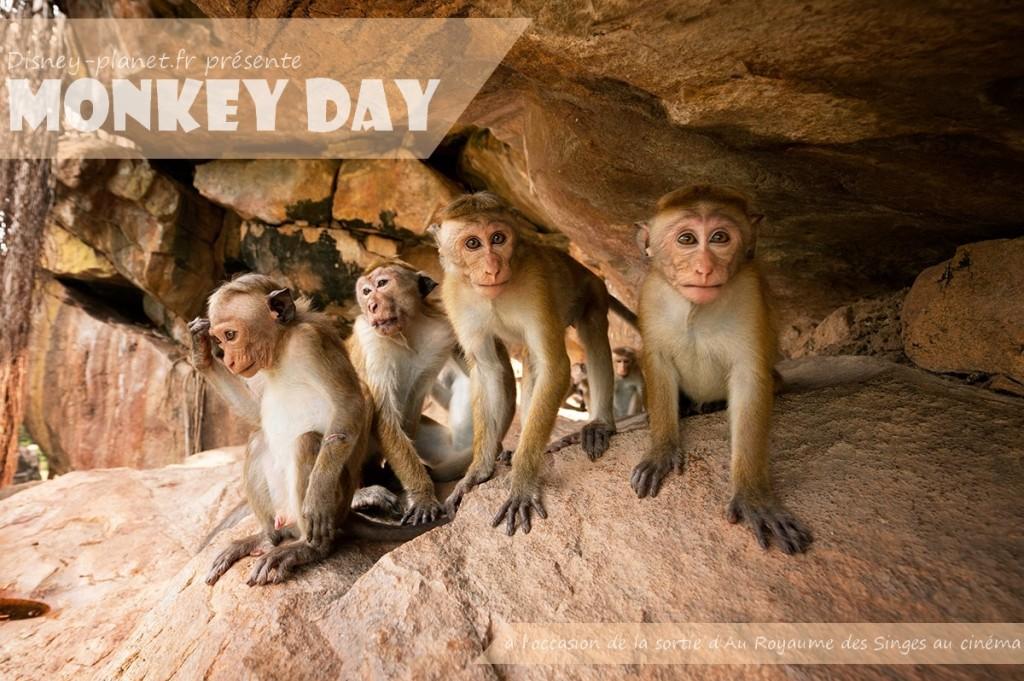 disney au royame des singes logo journée spéciale monley day