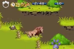 the wild disney jeu video