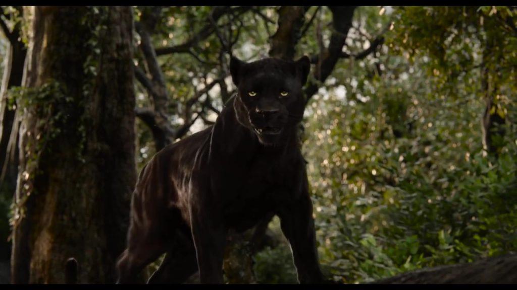 disney le livre de la jungle book personnage character bagheera