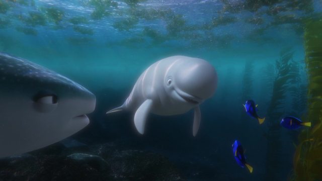 bailey personnage character monde finding dory disney pixar