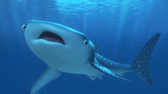 destinee destiny personnage character monde finding dory disney pixar