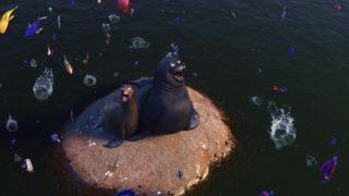 rudder pixar disney personnage character monde dory finding