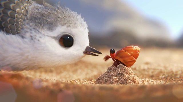 image piper disney pixar