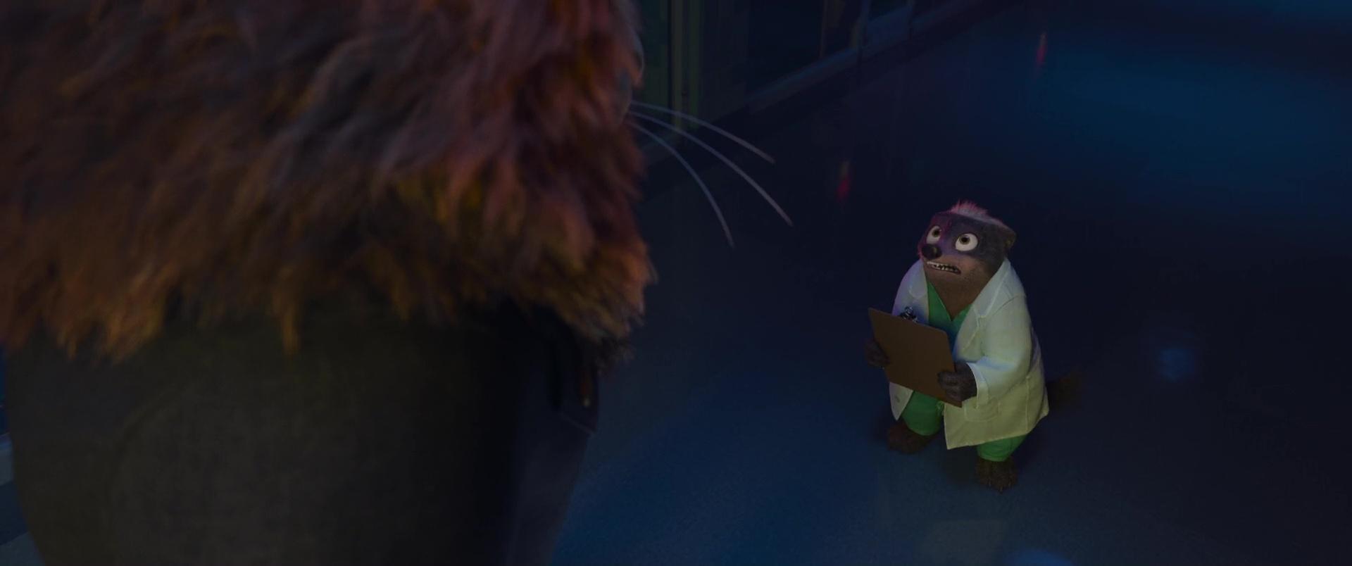 docteur madge disney personnage character zootopie zootopia