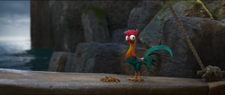 hei hei   personnage vaiana  legende bout monde moana disney character