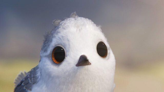 piper personnage character disney pixar