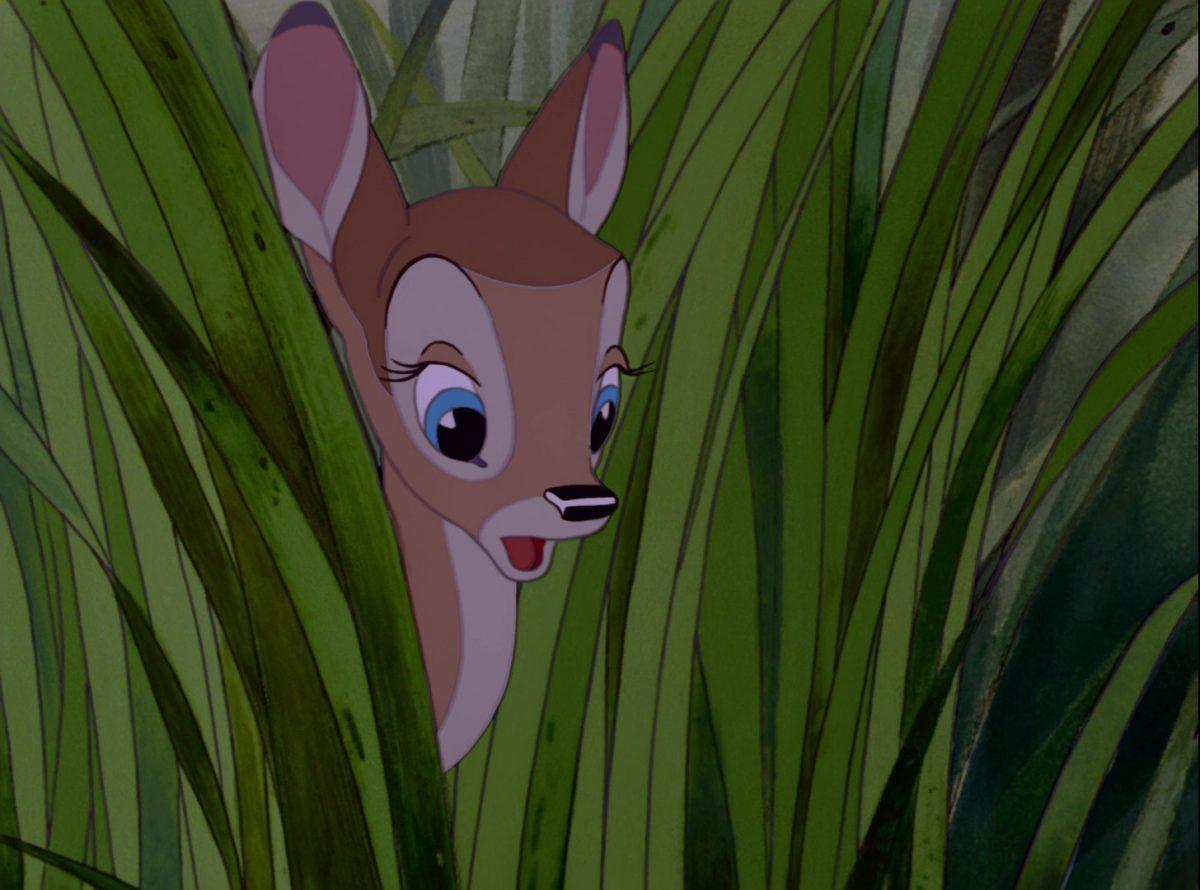feline faline disney personnage character bambi
