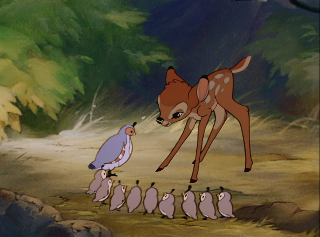 madame caille mrs quail disney personnage character bambi