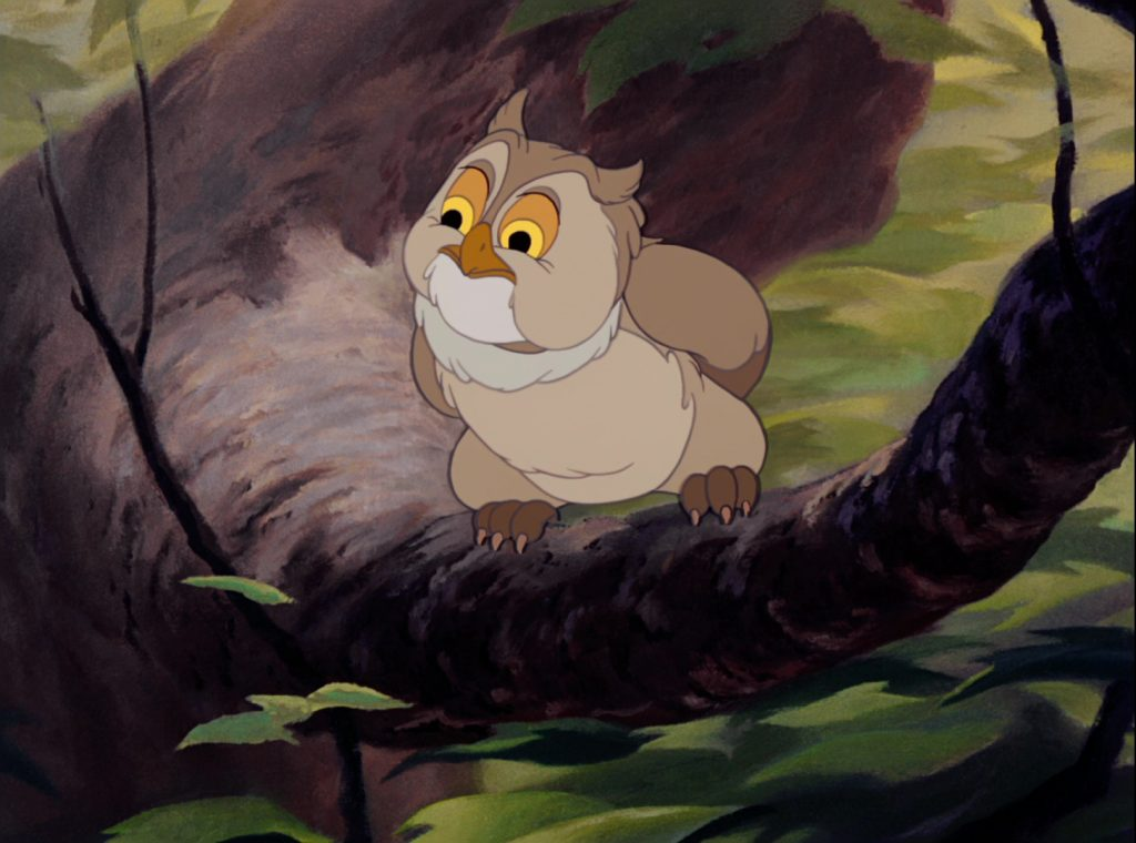 monsieur hibou friend owl disney personnage character bambi