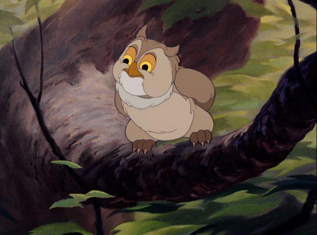 monsieur hibou friend owl disney personnage character bambi