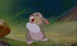 pan pan thumper disney personnage character bambi