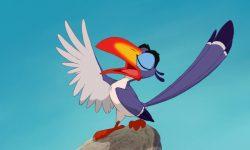 zazu disney animation personnage character roi lion king
