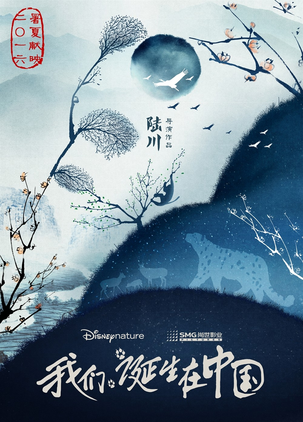 affiche poster disneynature born in china