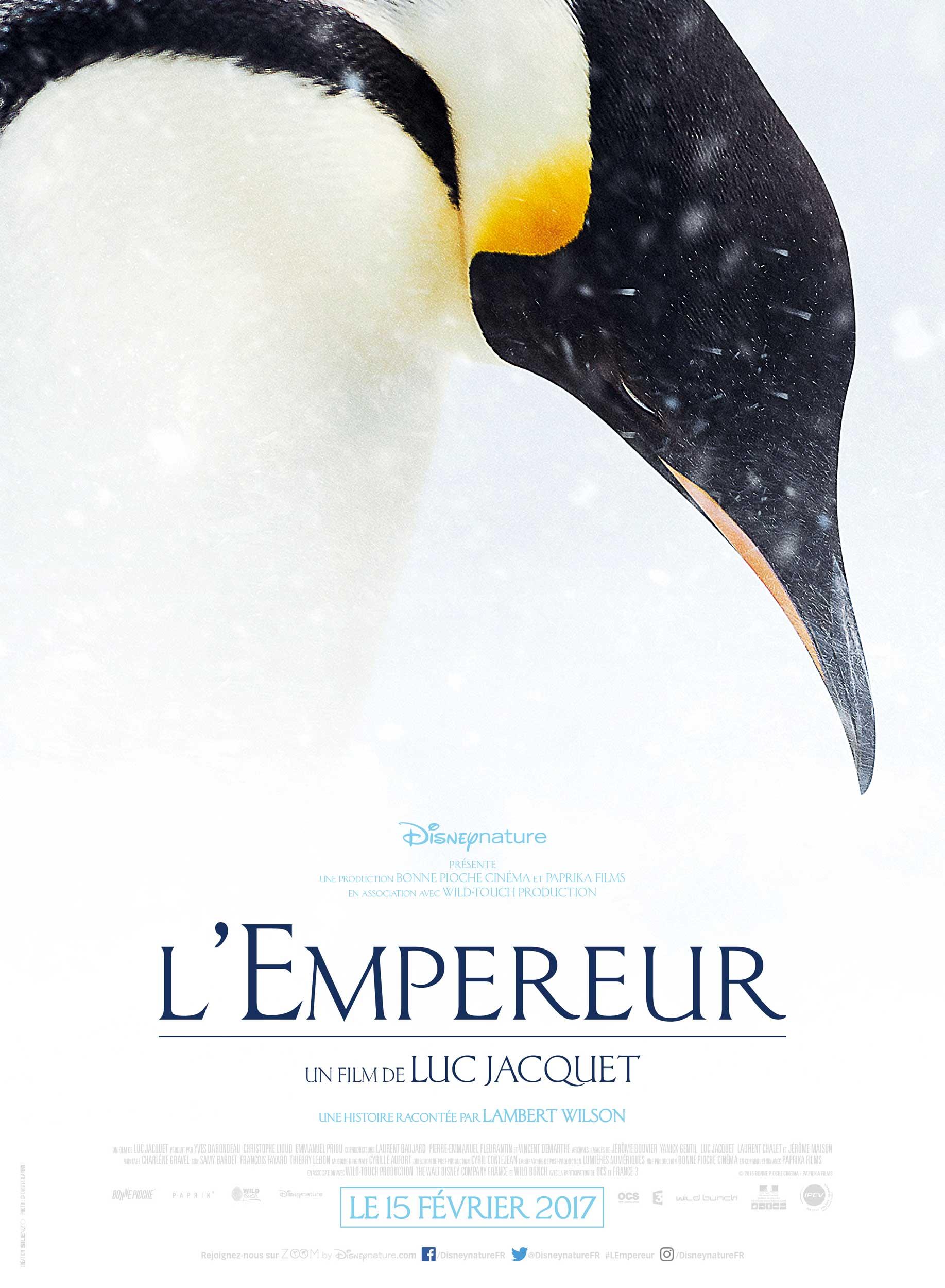 affiche poster l'empereur disneynature