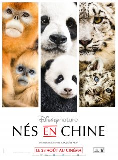 affiche ne chine born china poster disney disneynature