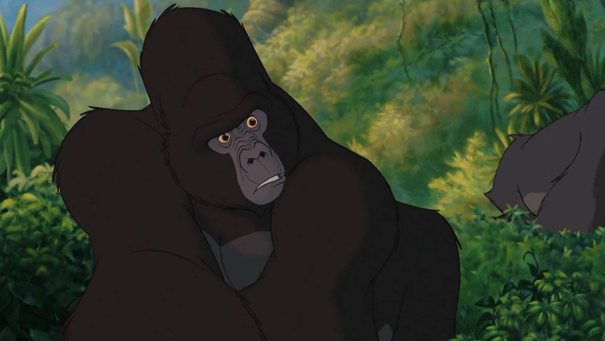 Kerchak was the leader of the gorillas and a major character in Disneys 1999 animated feature film Tarzan Kerchach is a large and powerfull gorilla who would do anything to protect his family Due to this Kerchak often appeared to be mistrusting cold judgmental aggressive towards