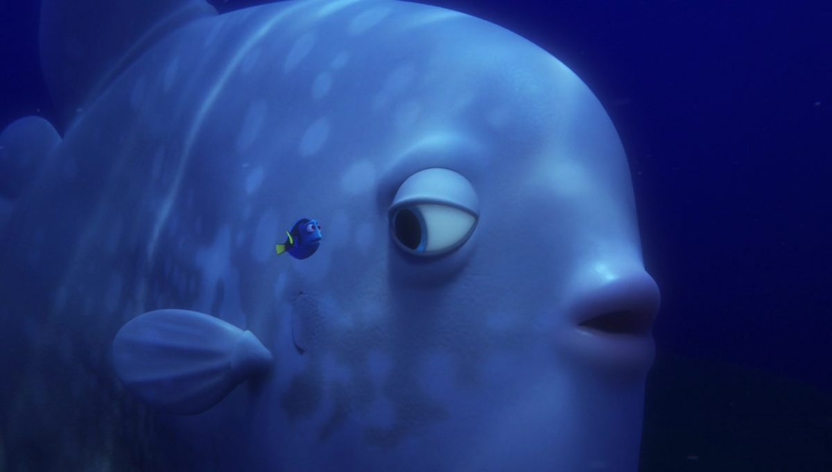 charlie back forth personnage character monde finding dory disney pixar