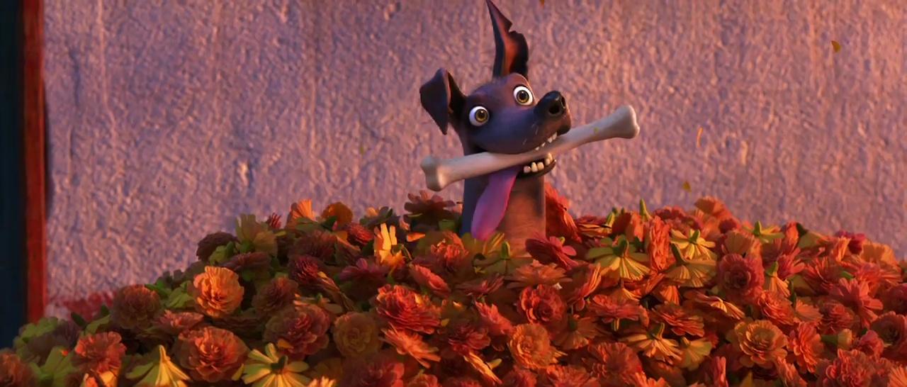 Dante Personnage Coco Disney Pixar Character