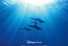Affiche Poster Disneynature disney Blue
