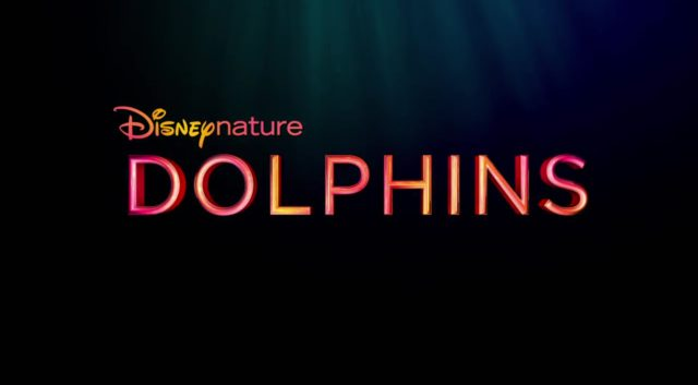 capture dolphins disney disneynature