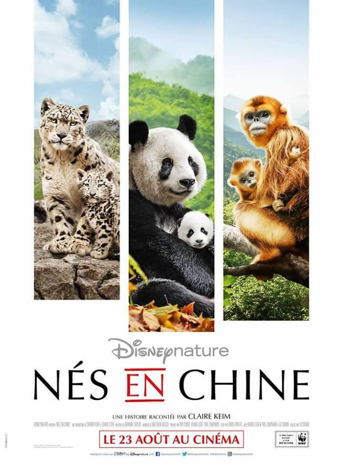 Actu affiche disney nature nés en chine born in china
