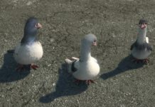 Disney personnages volt star malgré lui pigeons tom blake billy