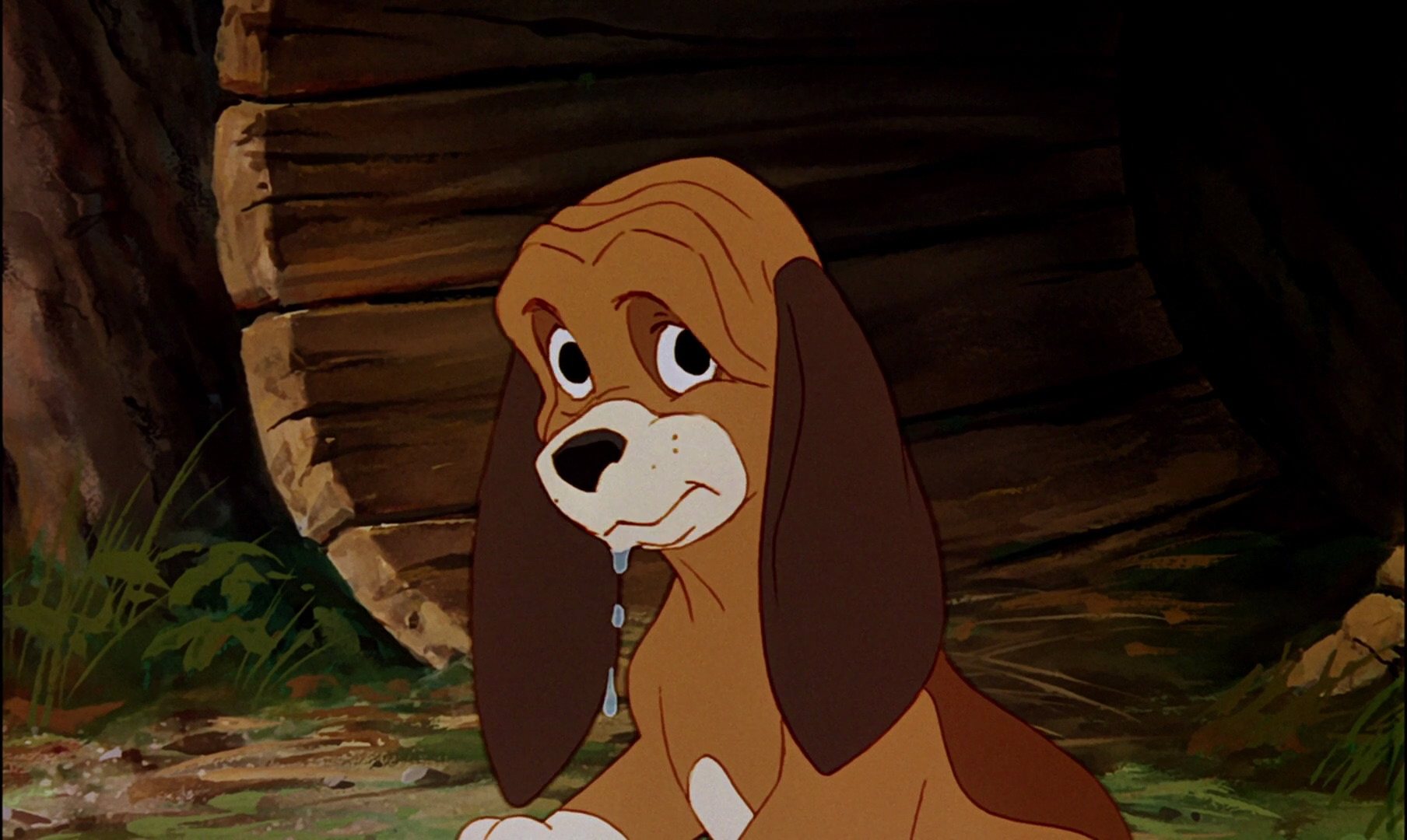 copper personnage rox rouky fox hound disney character