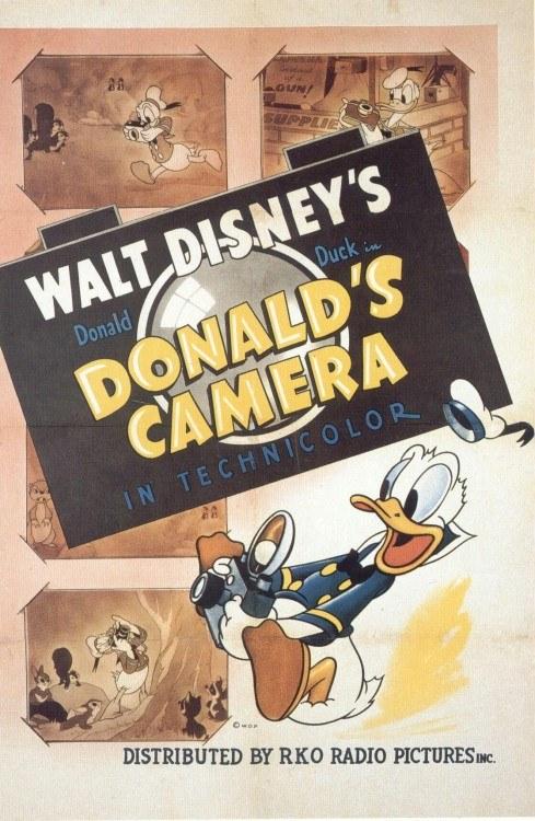 Affiche Poster donald photographe caméra disney