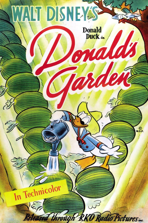 Affiche Poster jardin donald garden disney