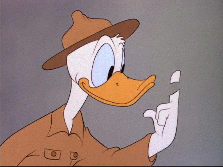 image donald camoufle vanishing private disney